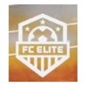 Mattel FC Elite