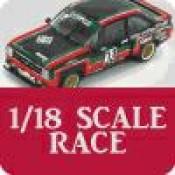 1/18 Scale Race