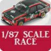1/87 Scale Race