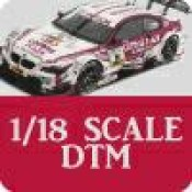 1/18 Scale DTM